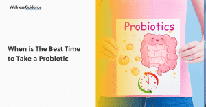 when-is-the-best-time-to-take-a-probiotic